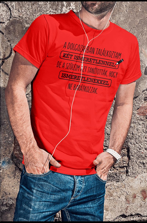 Két ismeretlenes matekos póló